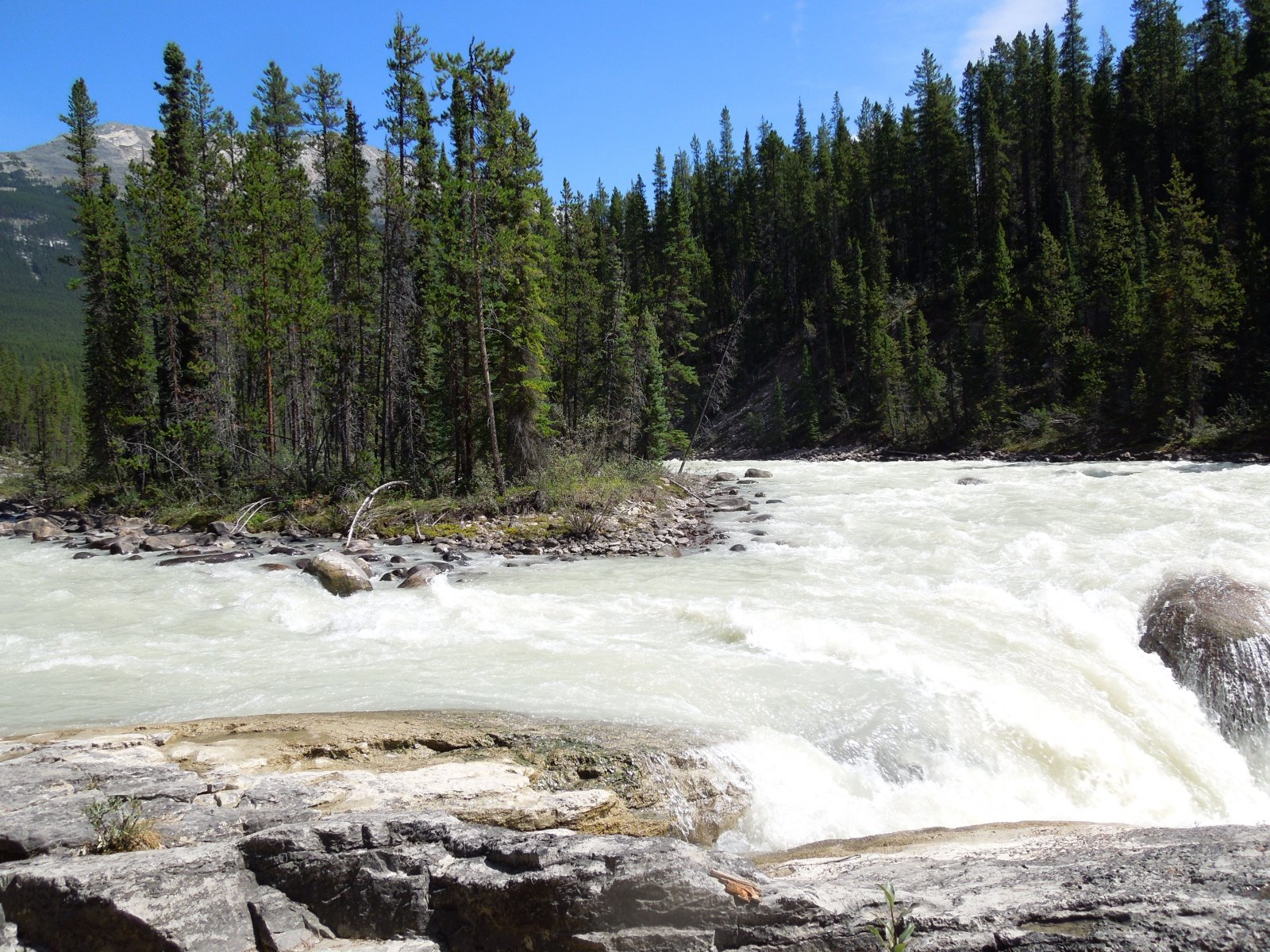 Click image for larger version  Name:Dawson Creek to Icefield Parkway to Cochrane 157.jpg Views:52 Size:514.7 KB ID:222442