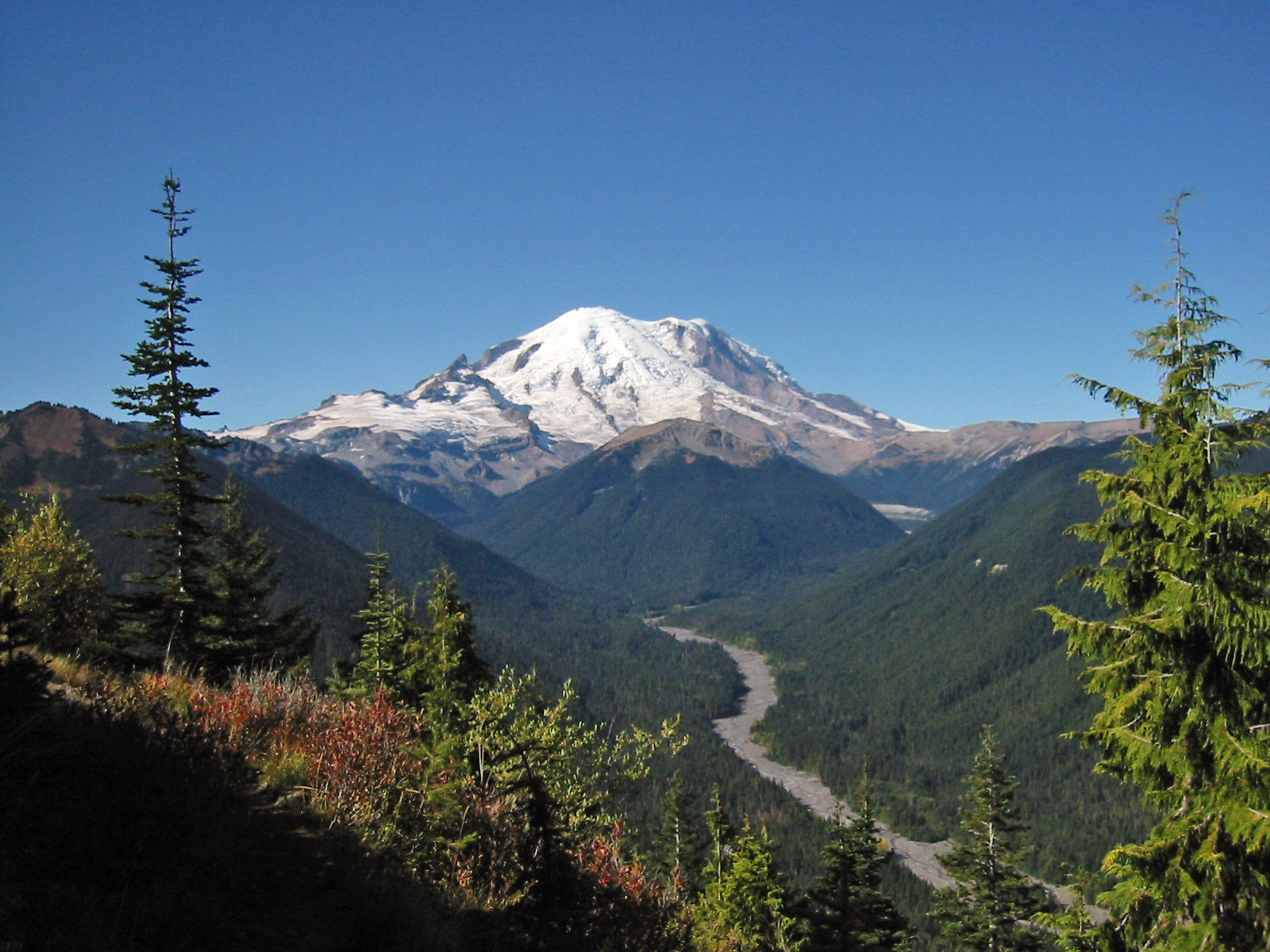 Click image for larger version  Name:Mount_Rainier_7437.JPG Views:58 Size:558.8 KB ID:224630