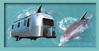 Click image for larger version  Name:twoairdolphins.jpg Views:288 Size:17.3 KB ID:2302
