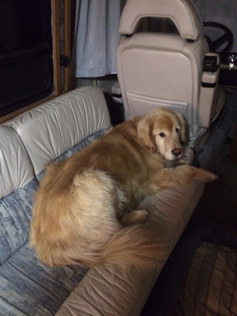 Click image for larger version  Name:ImageUploadedByAirstream Forums1428185573.083253.jpg Views:146 Size:101.2 KB ID:235593