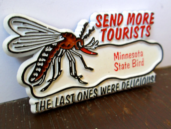 Click image for larger version  Name:Minnesota State Bird (2).jpg Views:26 Size:64.4 KB ID:235922