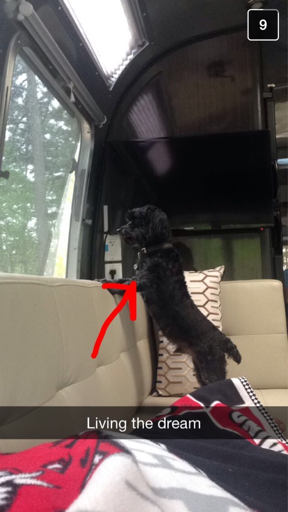 Click image for larger version  Name:ImageUploadedByAirstream Forums1431822714.551488.jpg Views:97 Size:107.0 KB ID:238536