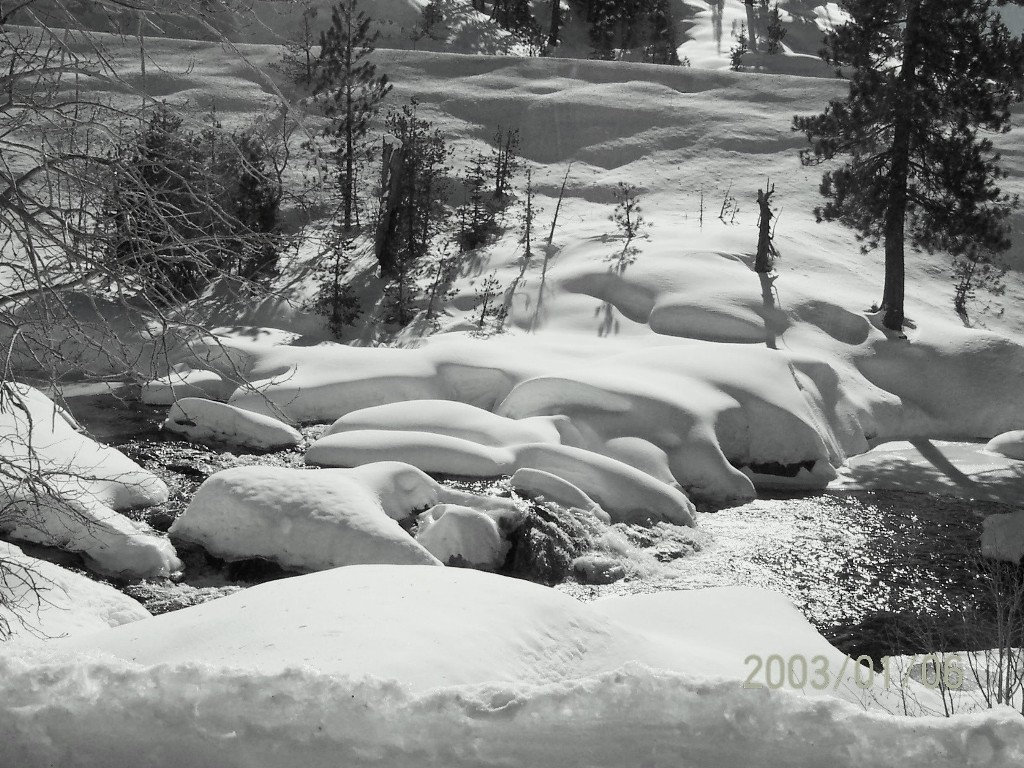 Click image for larger version  Name:snow.jpg Views:63 Size:262.0 KB ID:23906