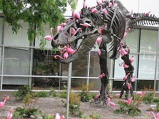 Click image for larger version  Name:Flamingo revenge.jpg Views:133 Size:257.5 KB ID:243030