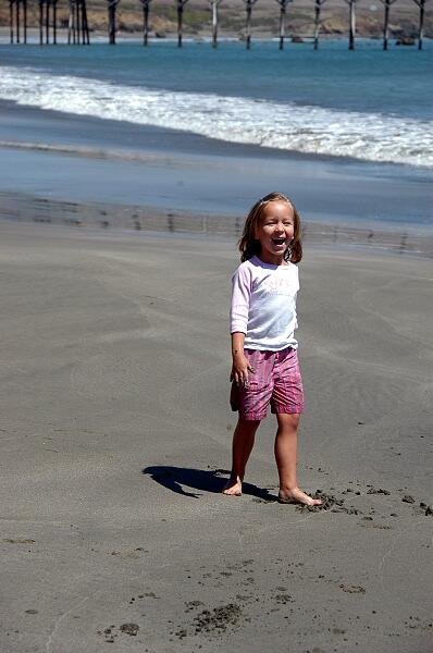 Click image for larger version  Name:DLN San Simeon Pier Beach.jpg Views:78 Size:119.6 KB ID:24606