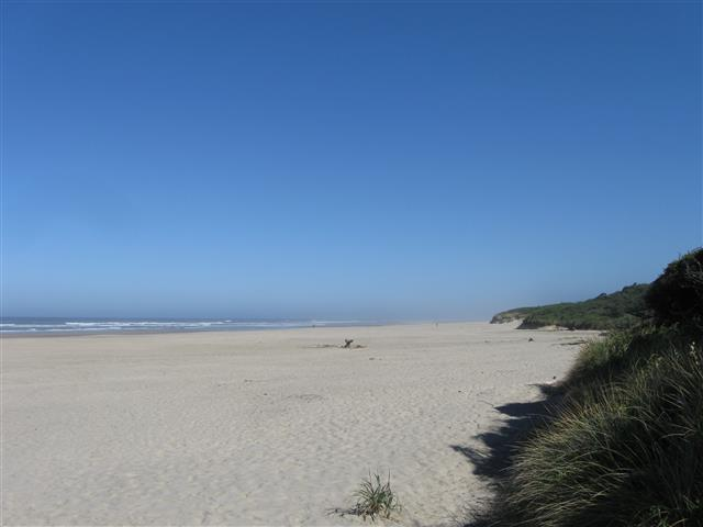 Click image for larger version  Name:Beachside 9-2014 (10) (Small).JPG Views:53 Size:29.4 KB ID:258436