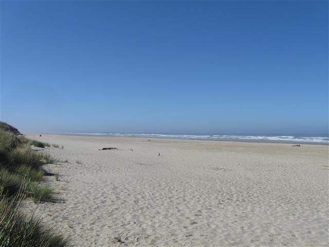 Click image for larger version  Name:Beachside 9-2014 (11) (Small).JPG Views:45 Size:35.0 KB ID:258437