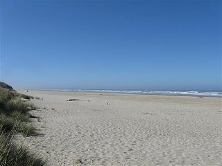 Click image for larger version  Name:Beachside 9-2014 (11) (Small).JPG Views:58 Size:35.0 KB ID:258437