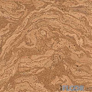 Click image for larger version  Name:cork-pattern.jpg Views:1089 Size:42.1 KB ID:2652