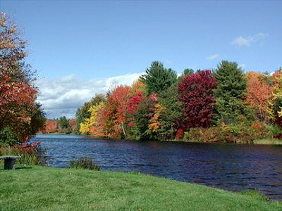 Click image for larger version  Name:fall foliage 2.jpg Views:84 Size:43.9 KB ID:26554