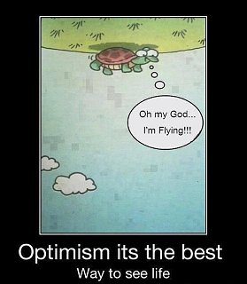 Click image for larger version  Name:turtle.jpg Views:46 Size:44.2 KB ID:269445