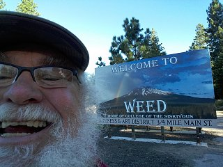 Click image for larger version  Name:Weed.jpg Views:159 Size:239.3 KB ID:276358