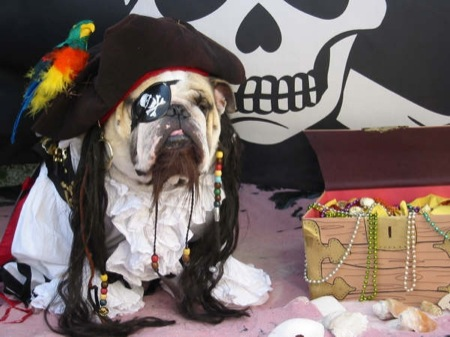 Click image for larger version  Name:pirate.jpg Views:65 Size:52.8 KB ID:27716