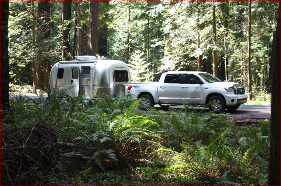 Click image for larger version  Name:2005 Bambi and 2008 Tundra_Avenue of the Giants - Northern California.JPG Views:259 Size:182.4 KB ID:294218