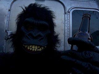 Click image for larger version  Name:Gorilla.jpg Views:73 Size:68.4 KB ID:305119