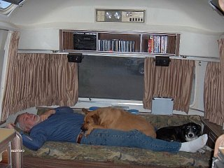 Click image for larger version  Name:sleeping:dogs.jpg Views:116 Size:85.2 KB ID:312914