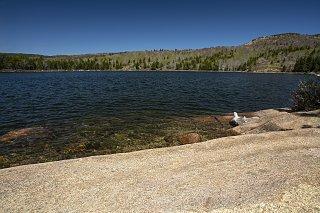 Click image for larger version  Name:Acadia_MAH2929-s.jpg Views:39 Size:425.2 KB ID:314117
