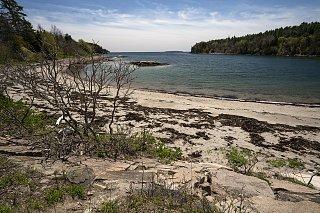 Click image for larger version  Name:Acadia_MAH2950-s.jpg Views:34 Size:588.8 KB ID:314118
