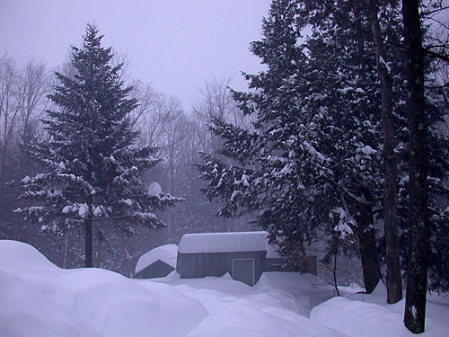 Click image for larger version  Name:ValentineSnow07_N5199.jpg Views:57 Size:59.8 KB ID:32350