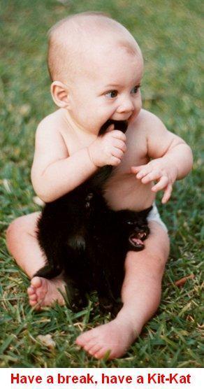 Click image for larger version  Name:kitkat.jpg Views:89 Size:30.9 KB ID:32444