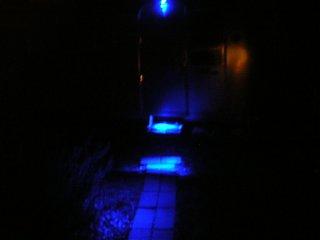 Click image for larger version  Name:Blue light.jpg Views:143 Size:70.7 KB ID:32568