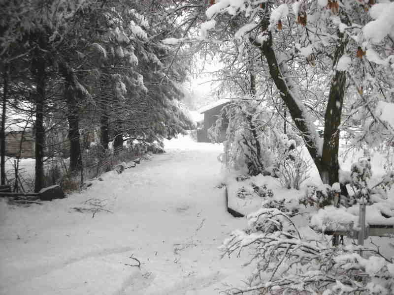 Click image for larger version  Name:Feb 2007 Snowstorm driveway small.jpg Views:54 Size:49.0 KB ID:32896