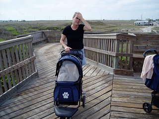 Click image for larger version  Name:PA110085_martha-stroller.jpg Views:108 Size:368.0 KB ID:342018