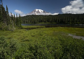 Click image for larger version  Name:Reflection Lake_MAH4274-s.jpg Views:5 Size:513.6 KB ID:350857