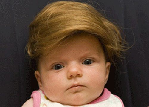 Click image for larger version  Name:baby_n_toupee.jpg Views:73 Size:27.0 KB ID:35774