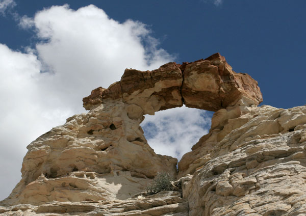 Click image for larger version  Name:IMG_3869 japanese arch-s.jpg Views:58 Size:86.1 KB ID:35996