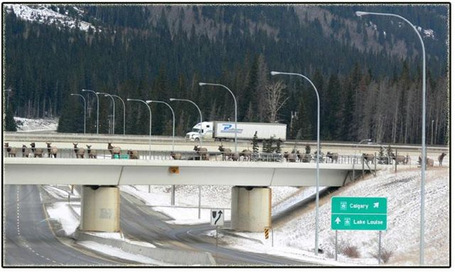 Click image for larger version  Name:banff.jpg Views:77 Size:53.8 KB ID:36068