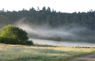 Click image for larger version  Name:Misty_River.jpg Views:69 Size:69.7 KB ID:36453
