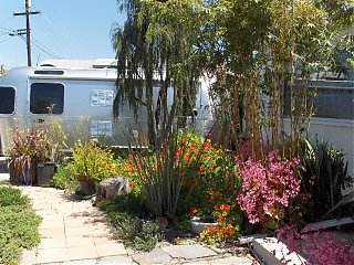 Click image for larger version  Name:HPIM0645 Front yard flowers.jpg Views:129 Size:146.5 KB ID:36546
