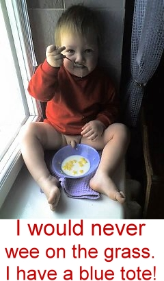 Click image for larger version  Name:wheaties 2.jpg Views:71 Size:64.1 KB ID:37183