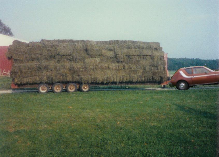 Click image for larger version  Name:Hay Trailer Gremlin.JPG Views:125 Size:64.4 KB ID:37230