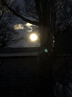 Click image for larger version  Name:Full Cold Moon B 29 Dec 2020.jpg Views:7 Size:176.4 KB ID:385723