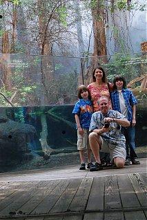 Click image for larger version  Name:Aquarium-1.jpg Views:79 Size:176.6 KB ID:38805