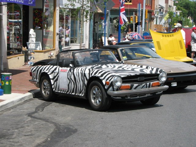 Click image for larger version  Name:Zebra TR6.jpg Views:67 Size:91.6 KB ID:41821