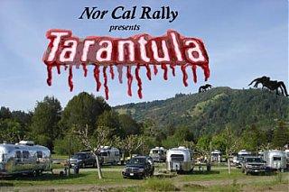Click image for larger version  Name:Tarantula RallyIII.jpg Views:73 Size:57.1 KB ID:42438
