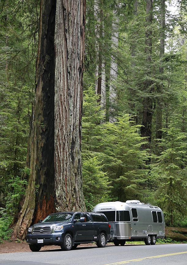 Click image for larger version  Name:Redwood-Highway-#2-72.jpg Views:98 Size:288.3 KB ID:43658