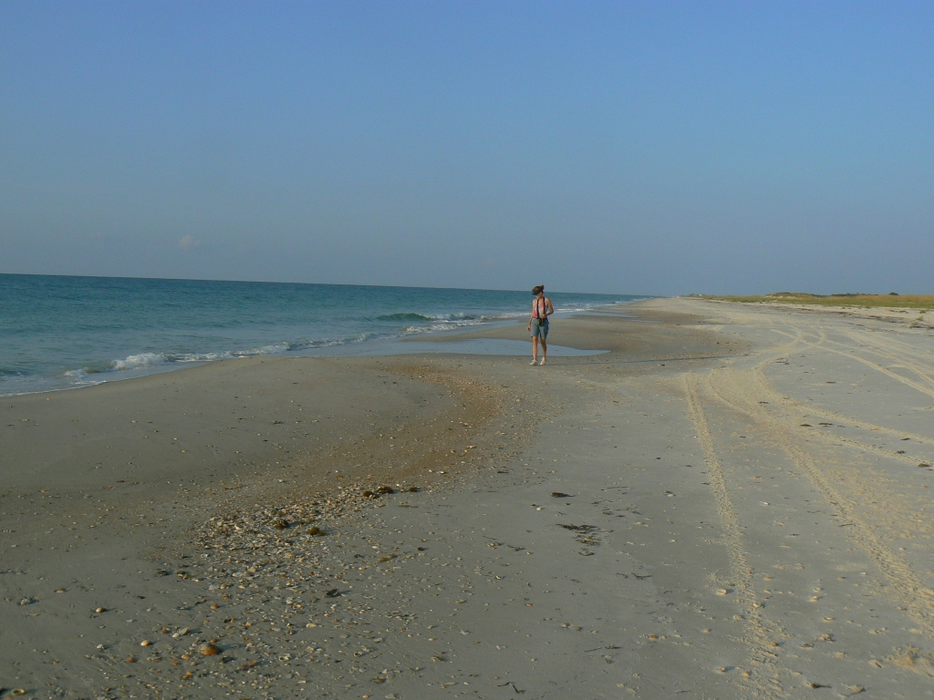 Click image for larger version  Name:Pat looking for shells.JPG Views:79 Size:305.1 KB ID:44128