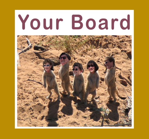 Click image for larger version  Name:Furry Board Rivettes.jpg Views:61 Size:133.2 KB ID:44255