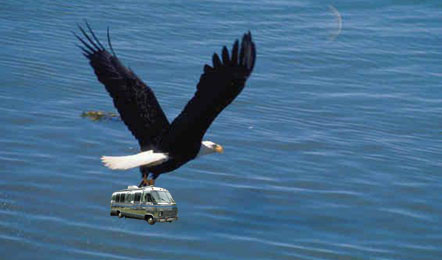 Click image for larger version  Name:eagleair.jpg Views:529 Size:28.6 KB ID:4442