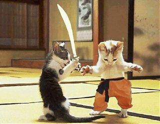 Click image for larger version  Name:animal-satire-kitten-cat-sword-feline-martial-arts.jpg Views:75 Size:62.5 KB ID:44980