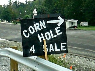 Click image for larger version  Name:corn hole 4sale.jpg Views:66 Size:85.0 KB ID:46241