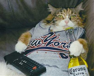 Click image for larger version  Name:drunk_cat.jpg Views:81 Size:30.5 KB ID:46251