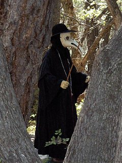 Click image for larger version  Name:HPIM1538 Plague Doctor sighting, close-up.jpg Views:168 Size:105.1 KB ID:46738