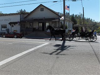Click image for larger version  Name:HPIM1621 Julian Horse & Carriage.jpg Views:98 Size:101.3 KB ID:46757