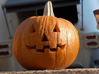 Click image for larger version  Name:HPIM1556 Pumpkin close-up.jpg Views:97 Size:53.2 KB ID:46772