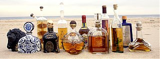 Click image for larger version  Name:tequilasummer05.jpg Views:74 Size:199.4 KB ID:47949